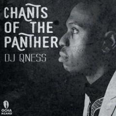 DJ Qness - Bambelela (Original Mix) Ft. Zizipho Ngwenya